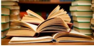 Affordable Book Review Essay